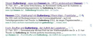 Das Phänomen Guttenberg nicht nur aus mittelhessischer Sicht