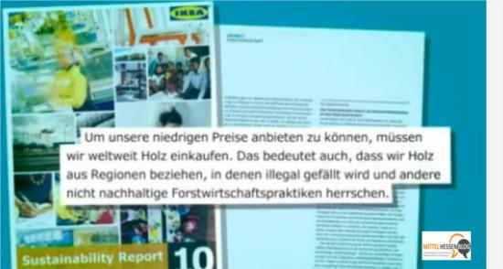 Im Umweltbericht 2010 sasgt Ikea offen, dass für niedrige Preise auch Holz aus Kahlschlägen gekauft wird. Quelle WDR-Markencheck, Grafik: Mittelhessenblog