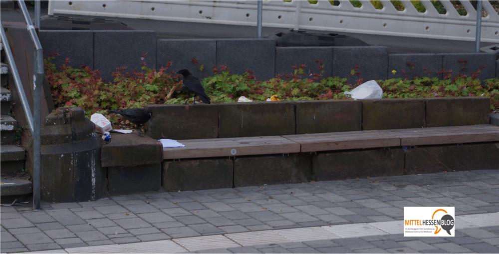 ...zu spontanen Krähenfütterstationen auf dem Weg zwischen Bahnhof und Parkhaus....Foto: v. Gallera - Mittelhessenblog.de