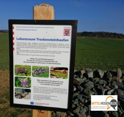 Trockensteinhaufen3