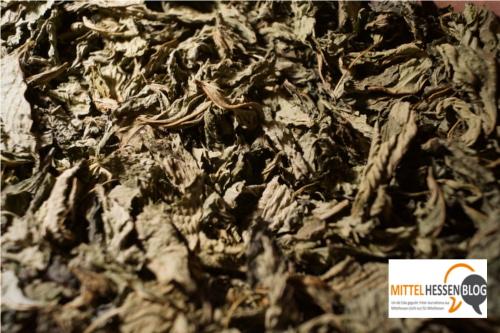 Getrocknete Jute: Für Tee - oder als Gemüse.....Foto: v. Gallera, Mittelhessenblog.de
