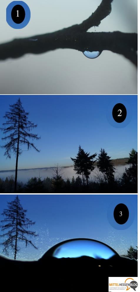 """Wie aus einem Wald und einem Nebelregentropfen ein """"Mittelhessenblibb"""", werden...Foto: v. Gallera"""