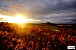 Pünktlich zu den Herbstferien rückt die goldene Oktobersonne an.…..