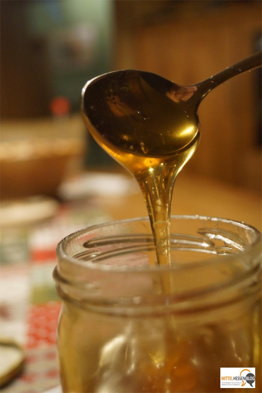 Mit Amerikanischer Faulbrut-Erregern verseuchter Honig kann Menschen nichts anhaben. Für den Bienennachwuchs wird er zur tödlichen Gefahr. Bild: v. Gallera